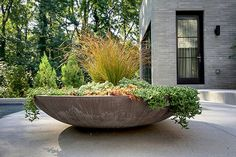 Large backyard landscaping ideas are quite many. However, for you to achieve the best landscaping for a large backyard you need to have a good design. Large Outdoor Planters, Big Planters, Outdoor Pots, Indoor Planters, Ceramic Planters, Large Hanging Planters, Large Garden Pots, Plants Indoor, Large Pots
