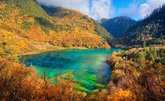 Wuhua Hai, or Five-Flower Lake, is the pride of Jiuzhaigon National Park in China. This lake contains such auspicious colors of nature, such flourishing flowers and trees of various kinds that it gives a multi-colored exquisite grandeur. This is why the lake is also called the 'five-flower lake'. The water actually consists of carbonate as well as hydrophytes which is why when the rays of sun combine with the water along with reflective colors of scenery around it, the lake beams with a…