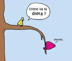Laugh Your way With the Best Diet Jokes of the Day – Nutsrok Diet Plans To Lose Weight, How To Lose Weight Fast, Losing Weight, Reduce Weight, Diet Humor, Fitness Humor, Food Humor, Fitness Plan, Fitness Tips
