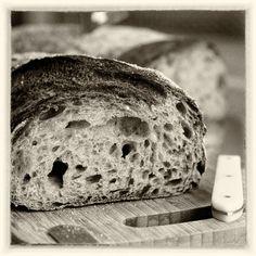 Bäcker Helmut Ruß mit einem Natursuaerteig. Bäckerei Ruß in Guldental an der Nahe. #MoToLogie #Brot #Brotkultur