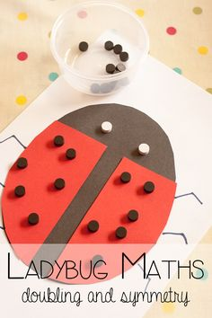 Ladybug Maths - work with your children on doubling numbers and symmetry using our favourite bug. Symmetry Activities, Preschool Learning Activities, Diwali Activities, Eyfs Activities, Preschool Education, Animal Activities, Early Education, Kindergarten Math, Educational Activities
