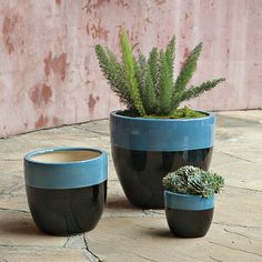 Claude Planters - Turquoise #WestElm  Great for back porch..dyi??