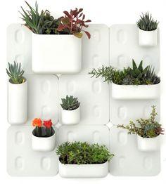magnetic vertical garden by URBIO... kickstarter campaign was successful.