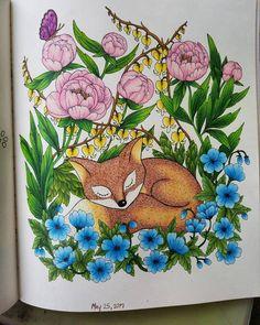 Colouring, Coloring Books, Rainy Days, Twilight, Wild Flowers, Mandala, It Is Finished, Cold, Illustration