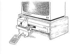 conejos suicidas