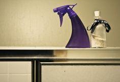 Daily Shower Spray Recipe