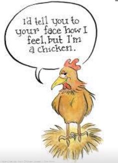 but I'm a chicken. Chicken Quotes, Chicken Humor, Funny Chicken, Chicken Coops, Chicken Pictures, Funny Memes, Jokes, How I Feel, Funny Cute
