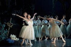 Giselle protects Albrecht from Myrtha. Ballet de Santiago