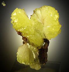Adamite / Ojuela Mine, Mexico / Mineral Friends <3