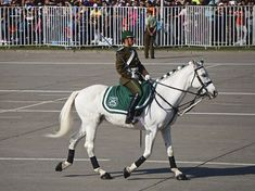 Chile, Female Soldier, Riding Boots, Police, Horses, People, Animals, Women, Female Cop