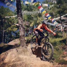Pre-Race run at Helipad Trail Tarevir Kathmandu by @devashish.dhr on his @commencalbikes meta sx 2017. He is representing Nepal at Junior Downhill Championship 2017 (Manali) & @himalayanmtb festival. #commencalnepal #kaliforlife ------ #commencalbicycles & #kaliprotectives exclusively available at #epicmountainbike Store. ------ http://ift.tt/1PeS1tr Serving Mountain Biking Community in Himalayas since 2004  Complete Branded Mountain Bike Store.  World Class Bike Service with Expertise…