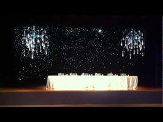 Disneyland Hotel Wedding Fireworks Backdrop !