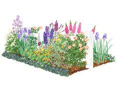 7x12' front yard cottage garden-delphiniums, foxgloves, daisies, iris