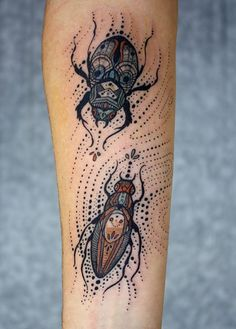David Hale - I'm not a fan of bugs, but this is beautiful work.