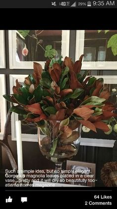 Magnolia leaves in a glass urn - very Southern and traditional Christmas Greenery, Christmas Arrangements, Christmas Tablescapes, Christmas Centerpieces, Floral Arrangements, Christmas Decorations, Holiday Decor, Southern Christmas, Christmas Home