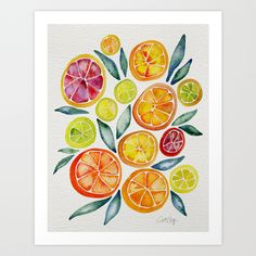 Sliced+Citrus+Watercolor+Art+Print+by+Cat+Coquillette+-+$18.00