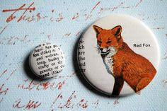 red fox, definition