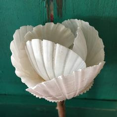 Use Walmart Jewelry Department For Your Shopping List Seashell Art, Seashell Crafts, Beach Crafts, Seashell Candles, Seashell Ornaments, Flower Crafts, Glue Gun Crafts, Clay Crafts, Sharpie Crafts