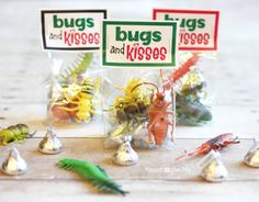Bugs and Kisses Valentine | These for boys and maybe ladybugs hairclips or something for girls in the class.