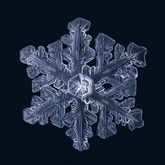 Gorgeous Macro Photographs of Snowflakes by Matthias Lenke | Colossal
