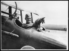 The Passion of Former Days: Pets of World War One