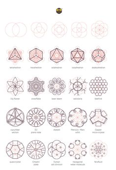 Geometry Matters: Various nature elements that abide by geometric laws and construction patterns. 2014.