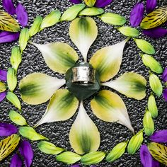 Omega Hammered Ring in Silver   #flower #mandalas #danmala #accessories #ring #saraswati   http://saraswatimoon.myshopify.com/search?q=omega+&search-button.x=0&search-button.y=0