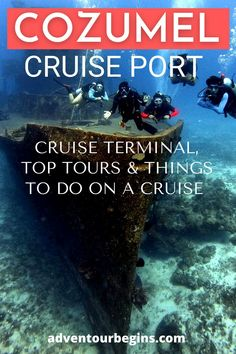 Cozumel Cruise Port Guide: Cozumel cruise terminal & port information. Read about the best things to do in Cozumel on a cruise (Swim with dolphins, Off-road Cozumel discovery, Tequila, and Chocolate tasting, Cozumel beaches, Explore Mayan Ruins, Cozumel snorkeling, and diving) & top Cozumel tours to the mainland (Tulum ruins, Chichen Itza, Rio Secreto, Climb the Coba pyramid and cenote swim, Xplor, Xcaret, Xenses adventure parks). Mexico cruise tips & Mexico travel #cozumel #cruiseport… Cozumel Snorkeling, Cozumel Beach, Cozumel Cruise, Cruise Port, Cruise Tips, Tulum Ruins, Mayan Ruins, Stuff To Do, Things To Do