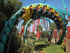 Bush Gardens--any theme park really!