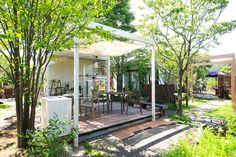 Garden Planning, Pergola, Outdoor Structures, Plants, Horticulture, Flora, Yard Design, Garden Design, Arbors