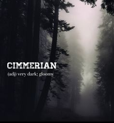 T'was a dark and gloomy night.... . . . #devonstrang #wordoftheday #wotd #word #words #wordporn #dictionary #language #definition #cimmerian #dark #darkness #gloomy #foggy #brumous