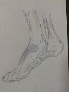 Pencil drawing on wax paper. Foot. Study in detail the musculature of the foot.