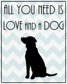 Dog lover, cat lover gift! All You Need is Love and a Dog or a Cat Silhouette by DesignsbyBry, $14.99