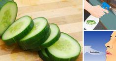 7-bienfaits-du-concombre-et-pourquoi-vous-devez-en-manger-tout-le-temps