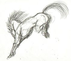 jump down horse sketch - Google Search