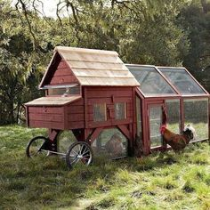 The Chicken Tractor                                                                                                                                                                                 More