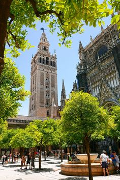 Sevilla Spain, Andalusia, Out Of This World, Spain Travel, Shade Garden, Malaga, Valencia, Big Ben, Countryside