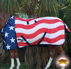 Chic 75 Hilason Ripstop Turnout Winter Horse Sheet Patriotic Us Flag Sporting Goods from top store Horse Fly, Horse Gear, My Horse, Horses, Horse Tips, Winter Horse, Western Horse Tack, Western Saddles, Barrel Racing Tack