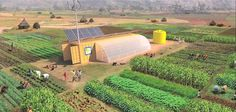 Thinking Outside the Box: This 2-Acre Shipping Container Farm Feeds 150 #news #alternativenews