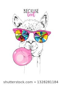 Llama in a rainbow glasses and with a pink bubble gum. Because cool - lettering quote. Humor card, t-shirt composition, hand drawn style print. Funny Phone Wallpaper, Cute Wallpaper Backgrounds, Cute Wallpapers, Llama Face, Llama Llama, Funny Llama, Cartoon Drawings, Animal Drawings, Llama Drawing
