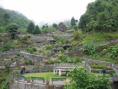 Tourism Place In West Bengal: Visit Famous Place With Photos Darjeeling.