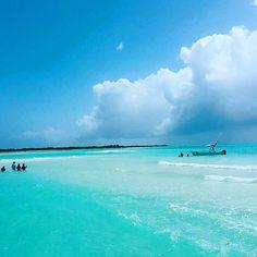 ~El Cielo~ nuestra playa favorita de #Cozumel.