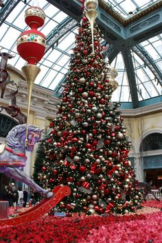 Christmas in Las Vegas- even seeing Wayne Newton!