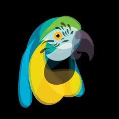 Fluid Animals: Parrot || Ben the Illustrator || http://bentheillustrator.prosite.com