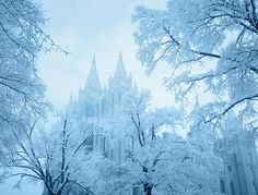 winter in Salt Lake City, Utah    This is such a pretty picture of the snow. This is why I love SLC