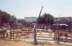 Timber Springs, Six Gun City, Old West Town with Gun Fights and riding stables...Near Palo Duro Canyons.