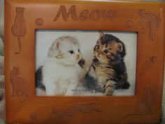 http://tophatter.com/auctions/6659    aww for the kitty lovers!!!!