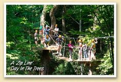 """A """"zip line"""" day in the trees!"""
