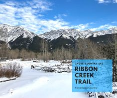 Looking for more winter adventure ideas around Calgary? Check out the Ribbon Creek cross-country skiing trail: Xc Ski, Trail Maps, Cross Country Skiing, Adventure Tours, Amazing Adventures, Weekend Getaways, Calgary, Around The Worlds, Ribbon