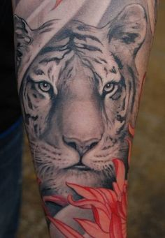 Japanese tiger sleeve tattoo.  Love the idea of doing part gray with color compliments